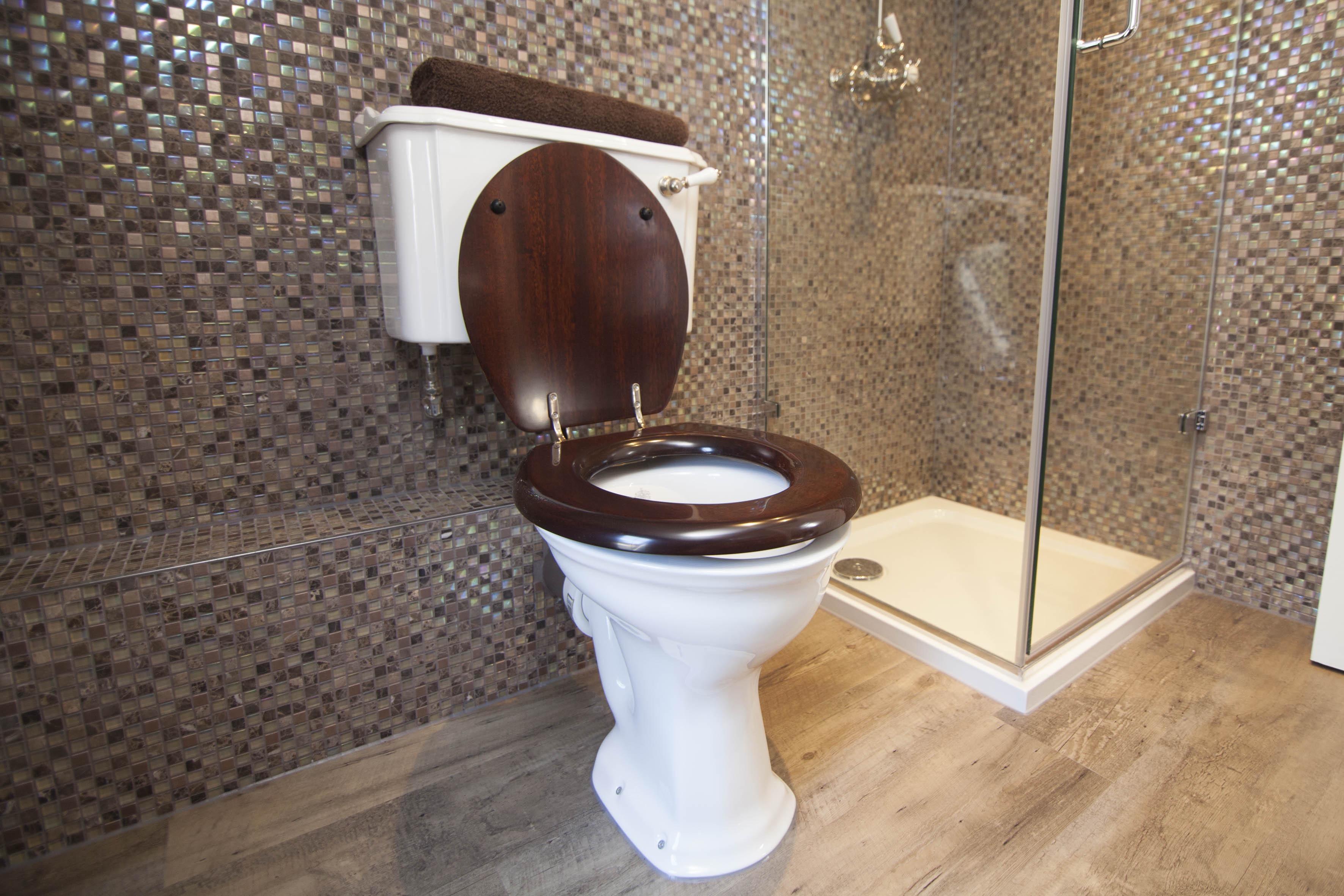 showerroom traditional toilet washroom