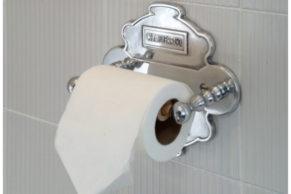 CHADDER A4 Toilet roll holder and back plate, Polished Metal Finish