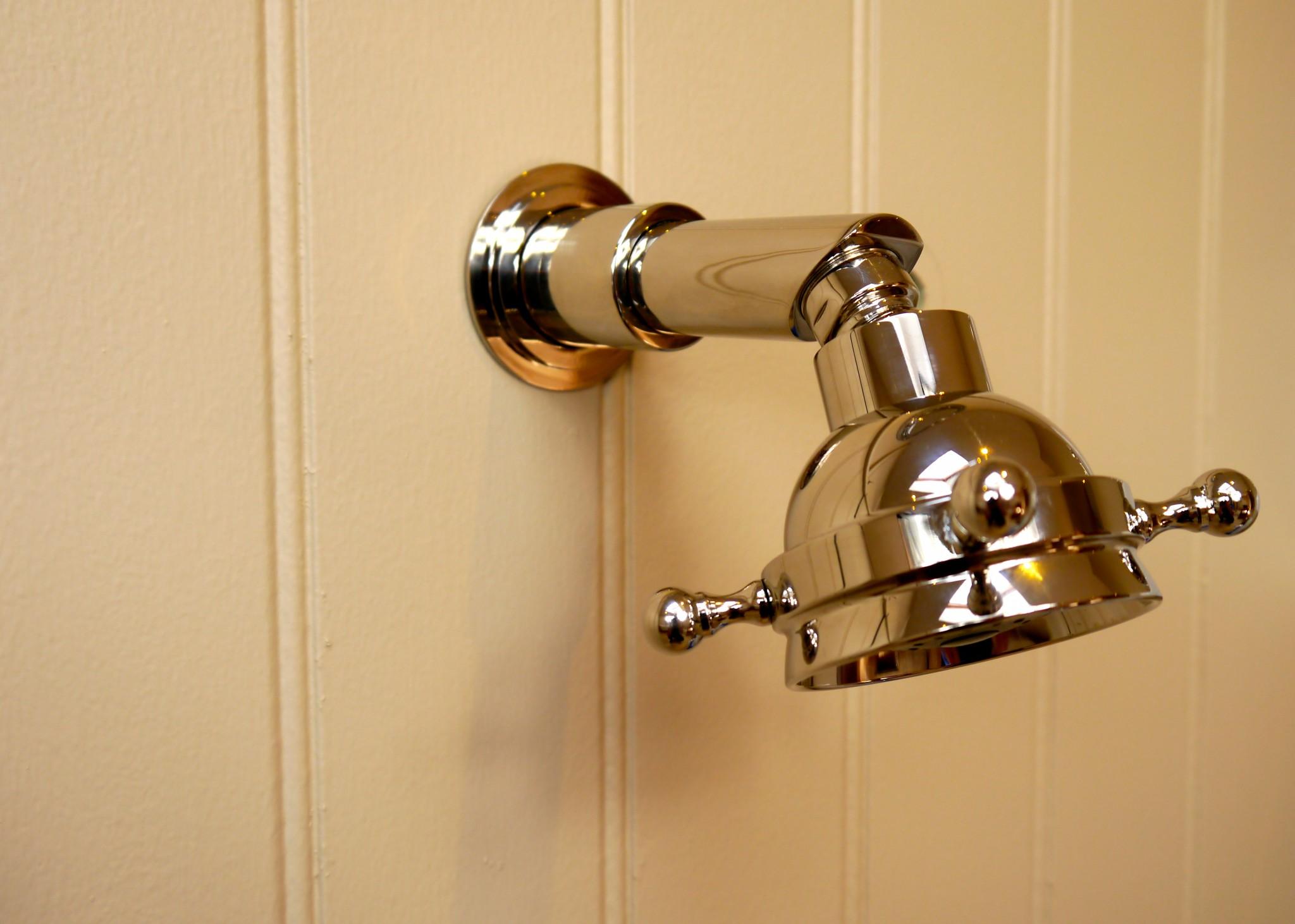 Classic Multifunction Shower Rose
